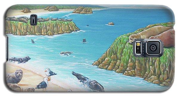 Seal Sanctuary  Galaxy S5 Case