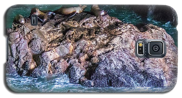 Galaxy S5 Case featuring the photograph Seal  Rock by Jonny D