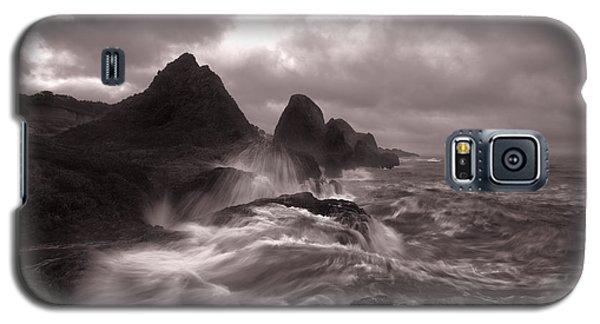 Seal Rock Thunder Galaxy S5 Case
