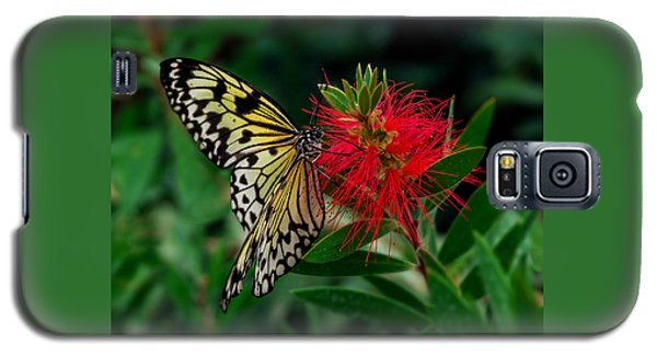Searching For Nectar Galaxy S5 Case