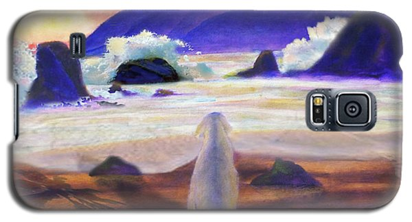 Sea Dog Galaxy S5 Case