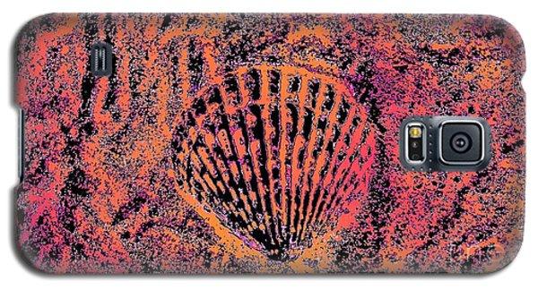 Seashell Delight Galaxy S5 Case