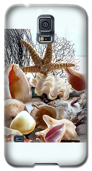 Seashell Galore Galaxy S5 Case