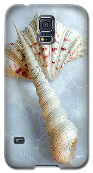 Galaxy S5 Case featuring the photograph Seashells #2  by Louise Kumpf