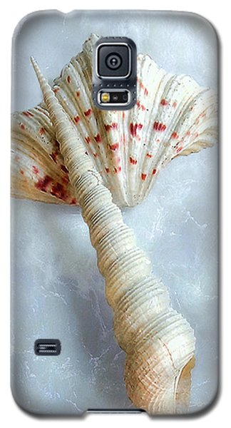 Seashells #2  Galaxy S5 Case by Louise Kumpf