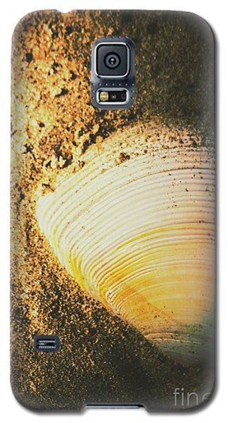 Seashells And Beach Colours Galaxy S5 Case
