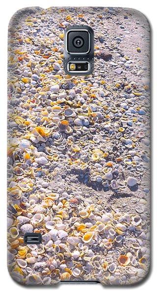Seashells In Sanibel Island, Florida Galaxy S5 Case