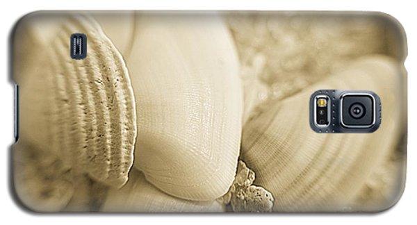 Seashells Galaxy S5 Case by Janice Spivey