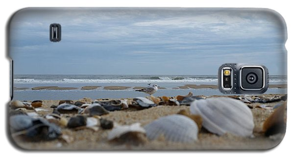 Seashells Seagull Seashore Galaxy S5 Case