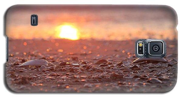 Seashells Suns Reflection Galaxy S5 Case by Robert Banach