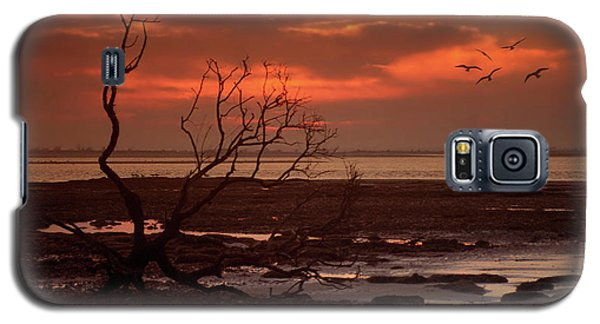 Seashore At Dawn Galaxy S5 Case