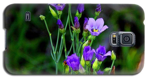 Seaside Gentian Wildflower  Galaxy S5 Case