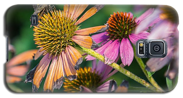 Galaxy S5 Case featuring the photograph Season Ending by Edward Peterson