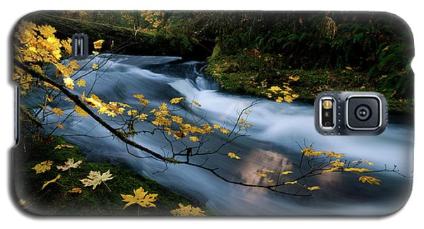 Seasonal Tranquility Galaxy S5 Case