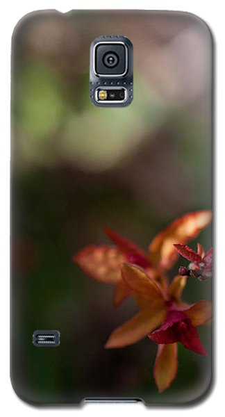 Galaxy S5 Case featuring the photograph Seasons Beginning by Cherie Duran