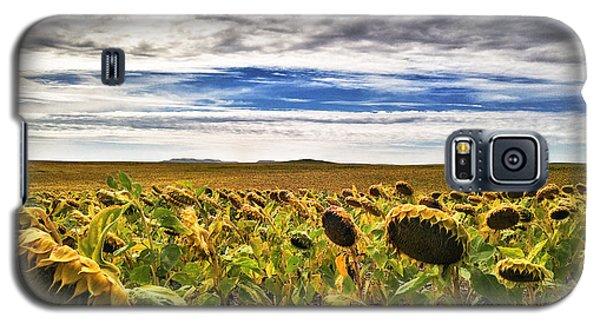 Seasons In The Sun Galaxy S5 Case