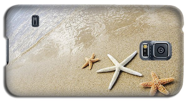 Seastars On Beach Galaxy S5 Case by Mary Van de Ven - Printscapes