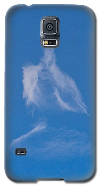 Seated Dhyani Buddha Galaxy S5 Case