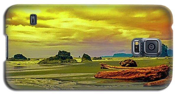 Seattle Wa. Ruby Beach Galaxy S5 Case