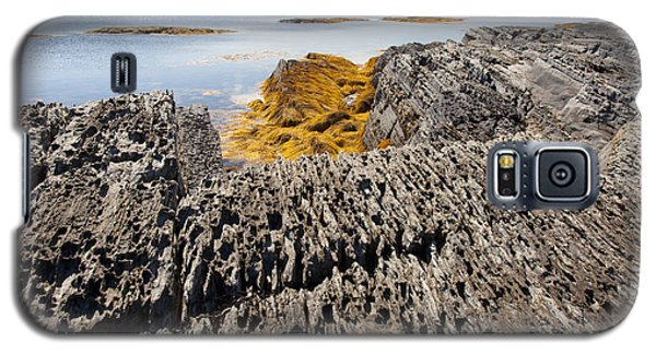 Seaweed On Rocky Coast Galaxy S5 Case
