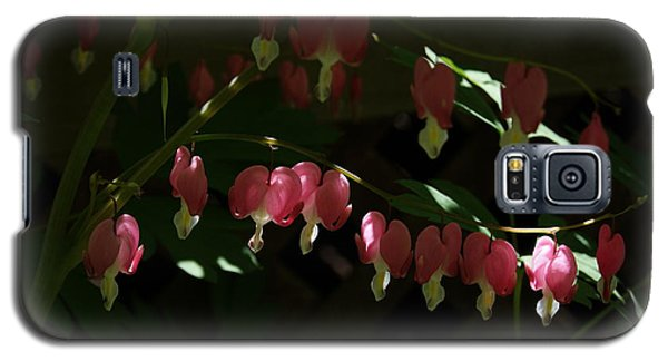 Galaxy S5 Case featuring the photograph Secret Hearts by Margie Avellino