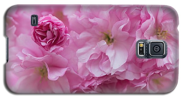 Secret Life Of Flowers Galaxy S5 Case