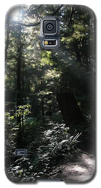 Secret Path Galaxy S5 Case