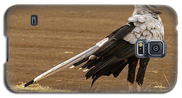 Secretary Bird Tanzania Galaxy S5 Case