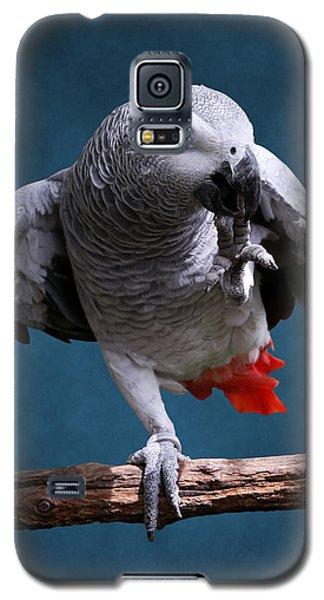 Secretive Gray Parrot Galaxy S5 Case