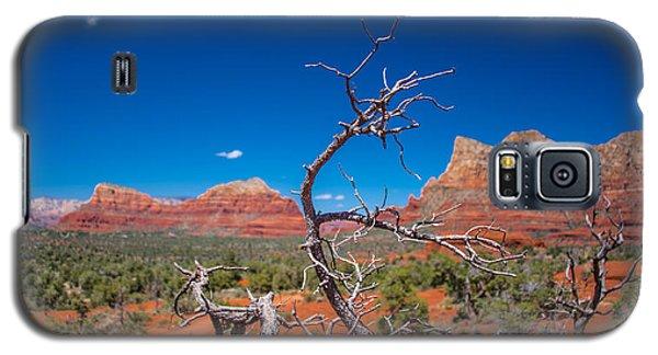 Sedona Blue Galaxy S5 Case
