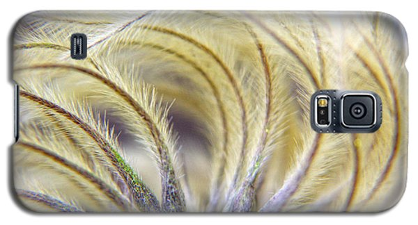 Seedheads Galaxy S5 Case