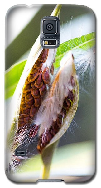 Seeds Galaxy S5 Case