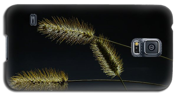 Seeds Of Life Galaxy S5 Case