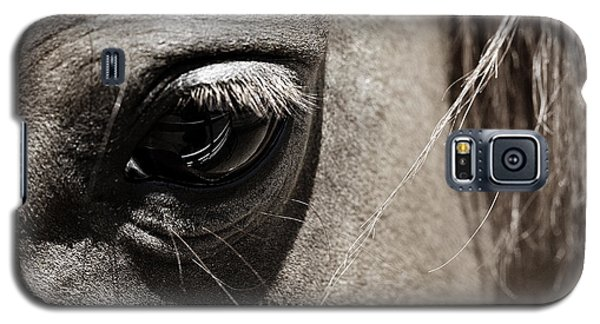 Stillness In The Eye Of A Horse Galaxy S5 Case by Marilyn Hunt
