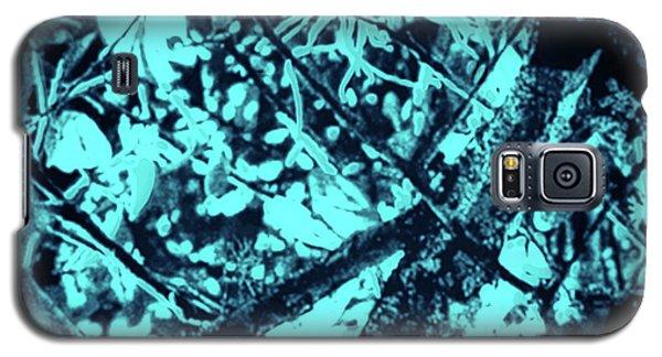 Seeing Through Trees Galaxy S5 Case