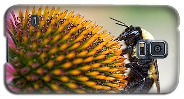 Seeking Nectar Galaxy S5 Case