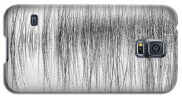 Seismograph Galaxy S5 Case