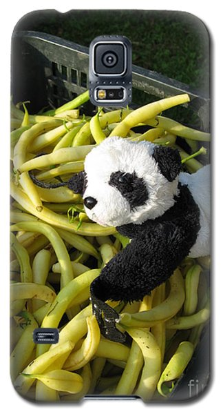 Galaxy S5 Case featuring the photograph Selling Beans by Ausra Huntington nee Paulauskaite