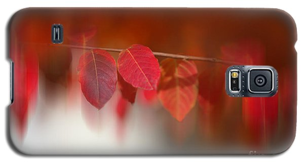 Semi Abstract Red Leaves Galaxy S5 Case by Linda Phelps