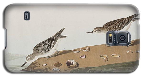 Semipalmated Sandpiper Galaxy S5 Case by John James Audubon