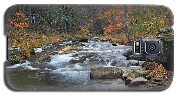 Seneca Creek Autumn Galaxy S5 Case