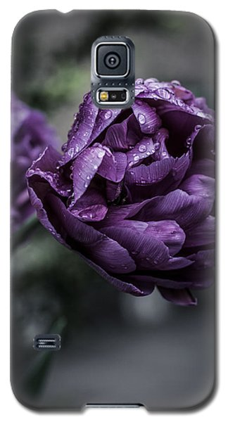 Sensational Dreams Galaxy S5 Case