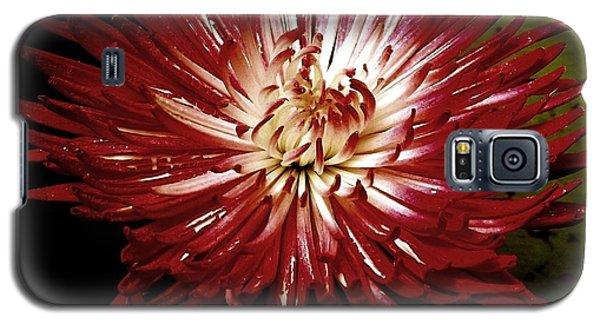 Sensitivity Galaxy S5 Case