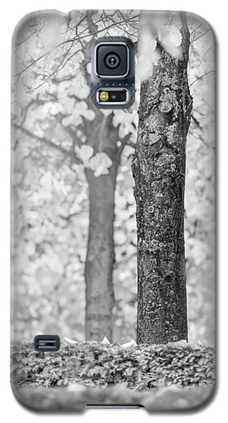 Separate Galaxy S5 Case