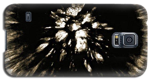Sepia Dandelion Galaxy S5 Case