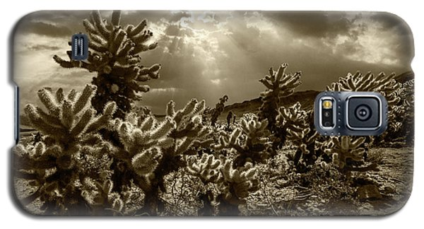 Galaxy S5 Case featuring the photograph Sepia Tone Of Cholla Cactus Garden Bathed In Sunlight by Randall Nyhof