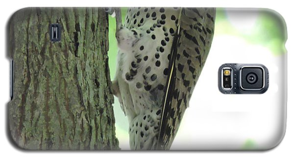 Galaxy S5 Case featuring the photograph September Flicker by Peg Toliver
