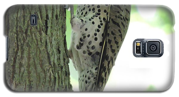 September Flicker Galaxy S5 Case by Peg Toliver