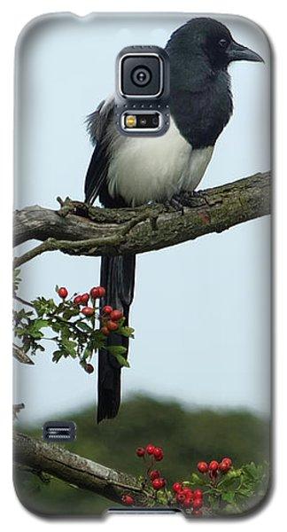 September Magpie Galaxy S5 Case