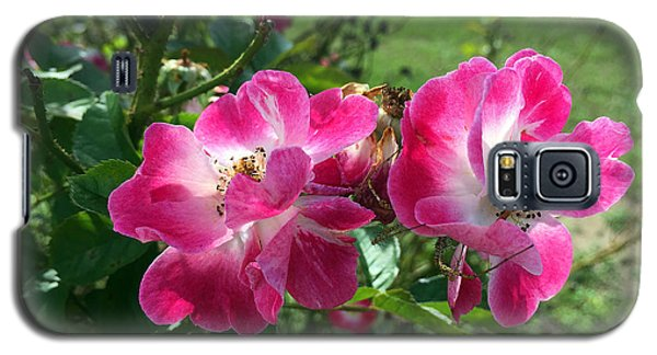 September Rose Galaxy S5 Case